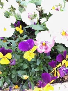 もうすぐ春_003