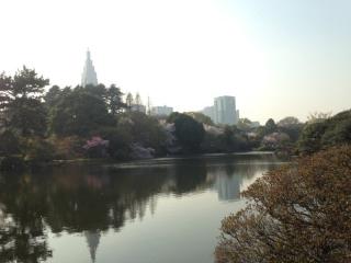 新宿御苑_01