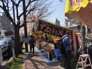 大岡川の桜_05