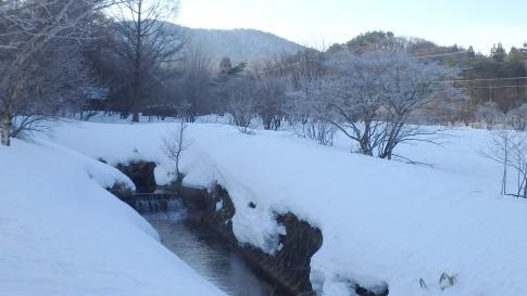 八幡高原 047-001
