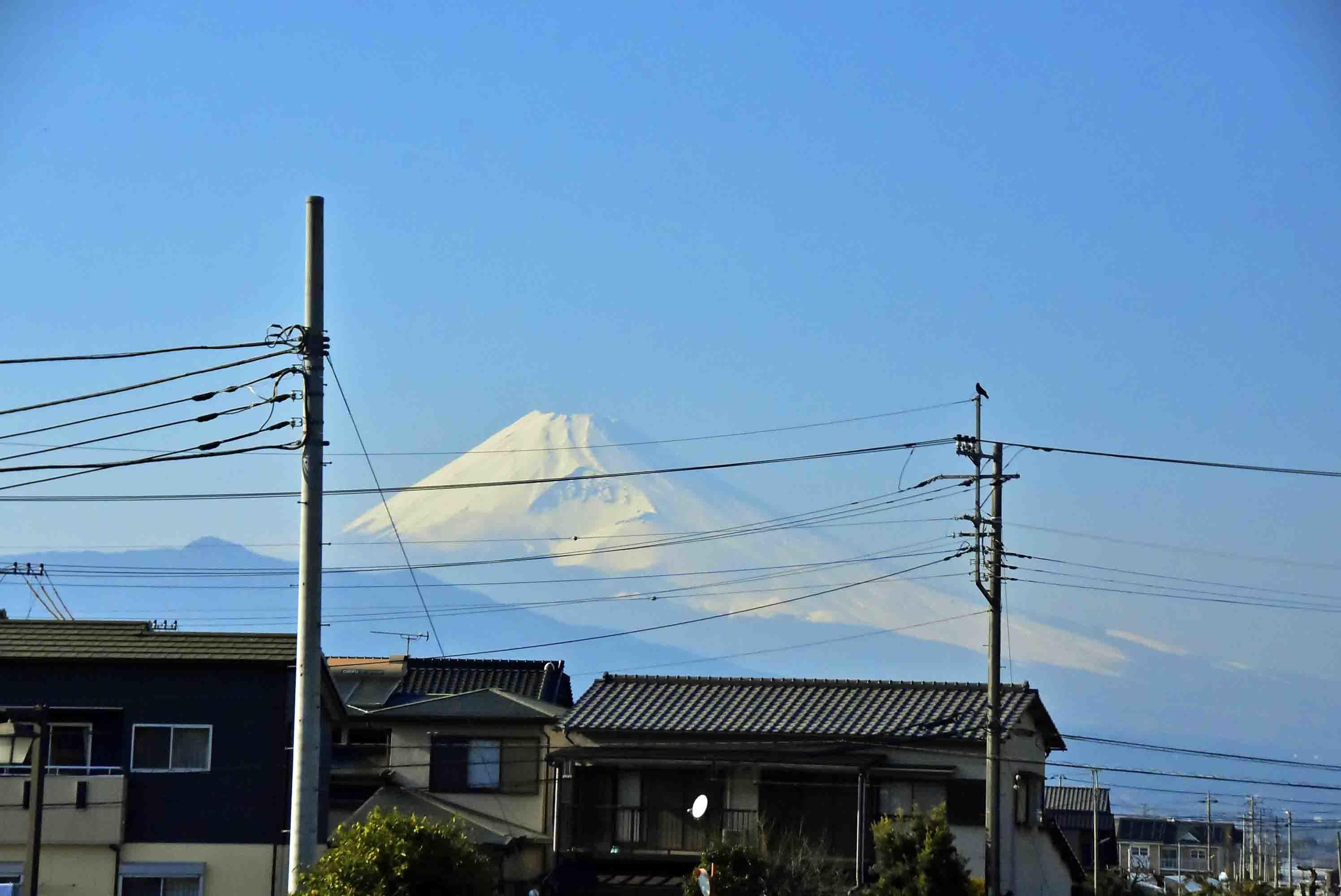 _DSC995裏門から見える富士山