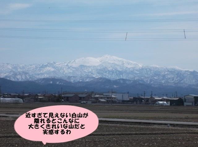 DSCF7036.jpg