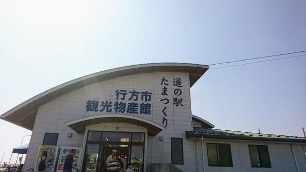 DSC_6539.jpg
