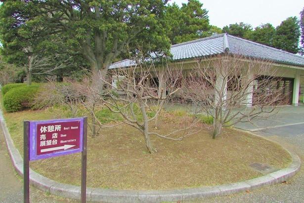 higashigyoen180217-123.jpg