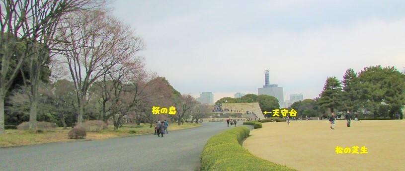 higashigyoen180217-133.jpg
