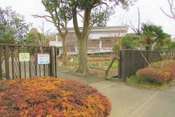 mizumoto180225-114.jpg