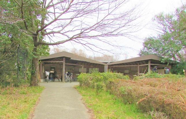 mizumoto180225-127.jpg