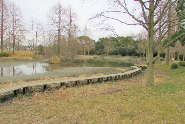 mizumoto180225-141.jpg
