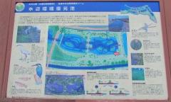 mizumoto180225-204.jpg