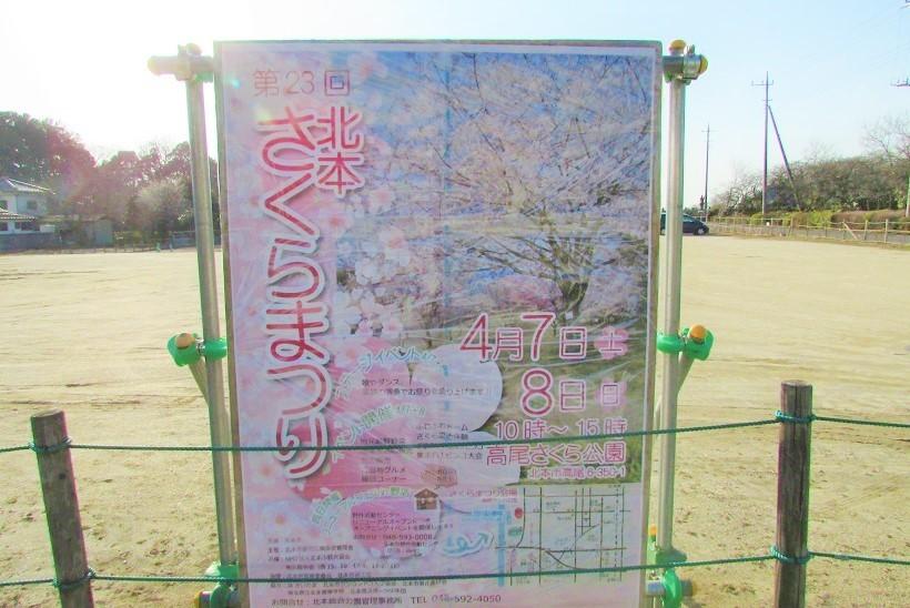 takaosakura180304-201.jpg