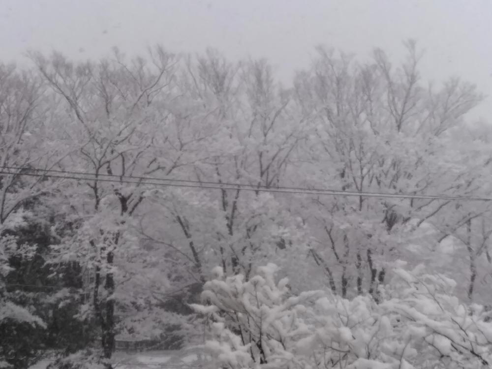 IMG_20180122弥生台東公園雪景色