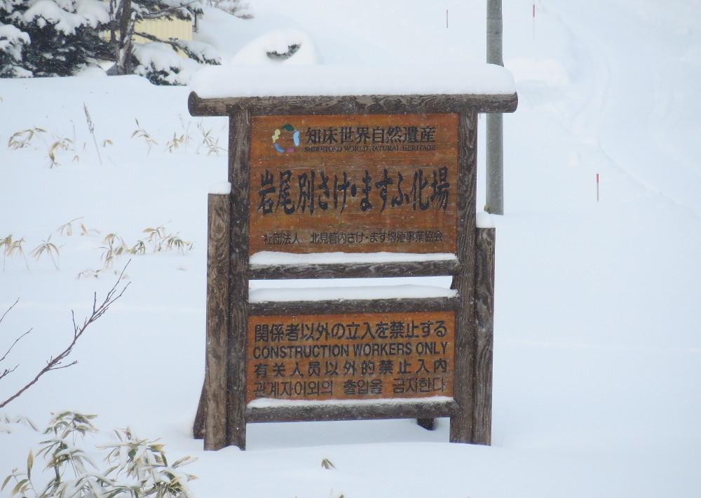 IMG_1922知床世界自然遺産