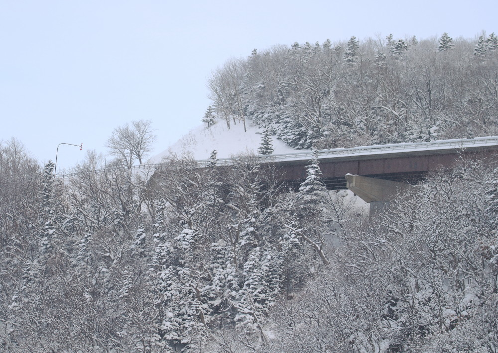 1M6A9401幌別橋の先知床へ道
