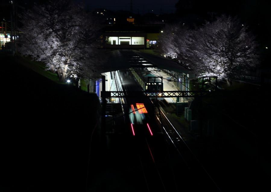 0N8A9500弥生台駅