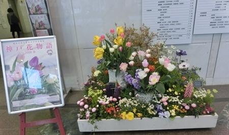 神戸花物語1