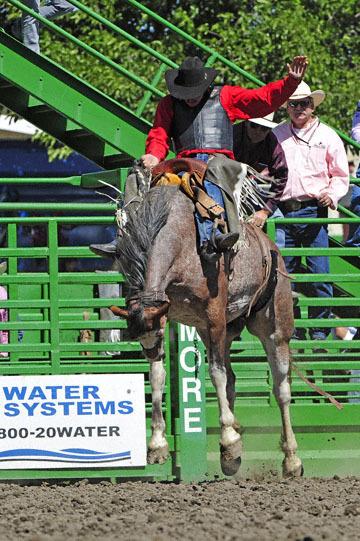 blog (4x6@300) Yoko 76 Livermore, Saddle Bronco 4, Taylor Cambra (NS)_DSC7616-6.10.17.(3).jpg