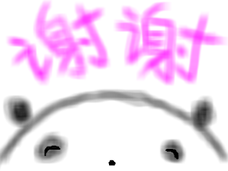 snap_yokorea_201833185619.jpg