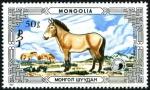 モンゴル・モウコノウマ