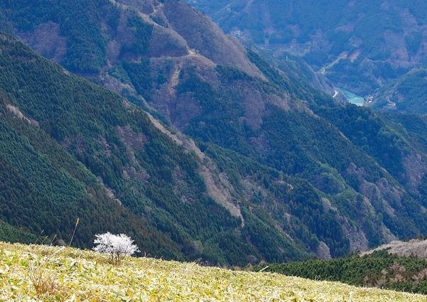5中津明神山180323