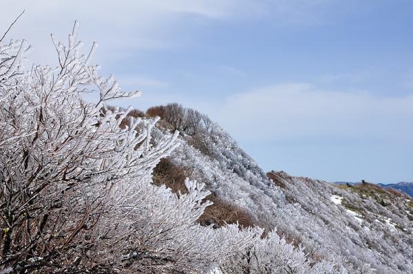 9中津明神山180323