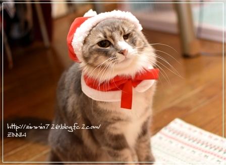 Merry Christmas~♪3