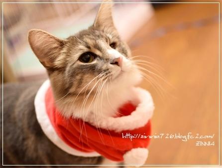 Merry Christmas~♪4